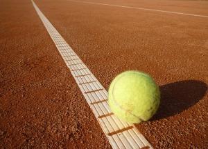 tennis-ball-443272_640